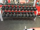 CYBEX Free Weight Twin Tier Dumbbell Rack