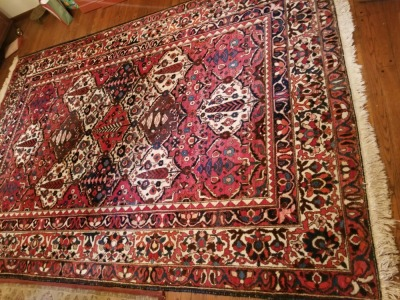 10'7'' x 7'4'' Persian Style Rug 100% Woolpile
