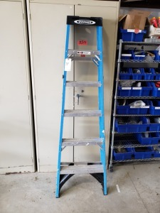 (1) Werner  6 FT Ladder