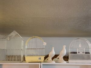 Bird cages and quail figures