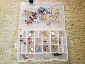 Assorted Broaches With Organizer Lot