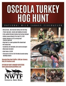 Osceola/Hog for 1 In Florida with God's Country Outfitters