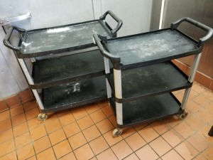 (2) Rolling Carts Lot