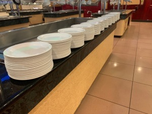 Large Plate Lot