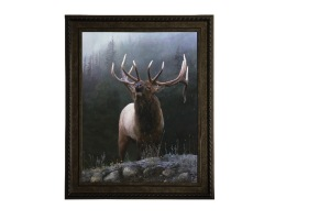 Mountain Music Elk Giclee  by Jay Kemp