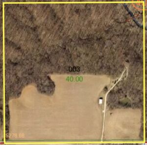 40 Acre +/- David Moore Farm