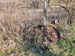 (5) Antique Wagon Wheels