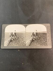 10-20 Case pulling 3 bottom plow Stereographic Image