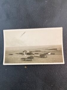 Vintage Photo of Horse Drawn Grain Planters